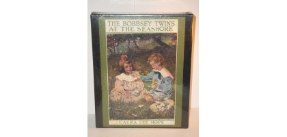 500 Piece collectible At the Sea Shore Cherry Corners Bobbsey twins Puzzle RARE